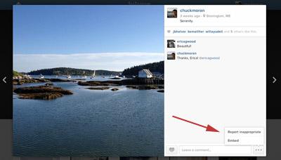 Instagram embed screenshot